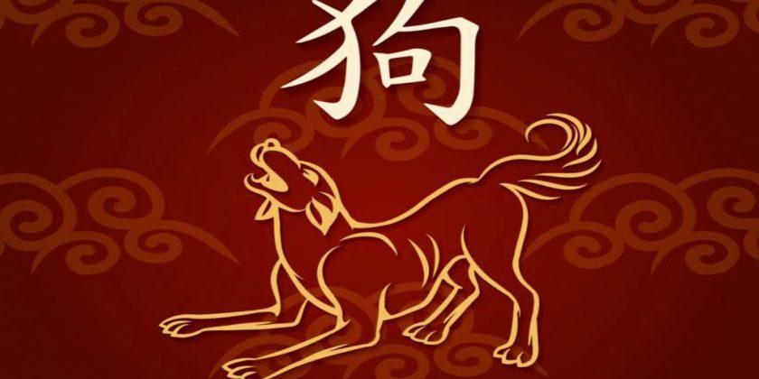 гороскоп собака 2022