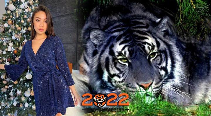 В чем и каком цвете встречать Новый 2022 год Черного Водяного Тигра