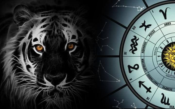 Каким будет 2022 год Черного Водяного Тигра