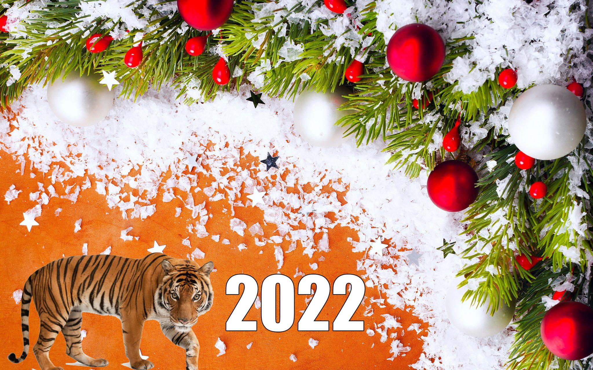 Викторины на Новый год Тигра 2022