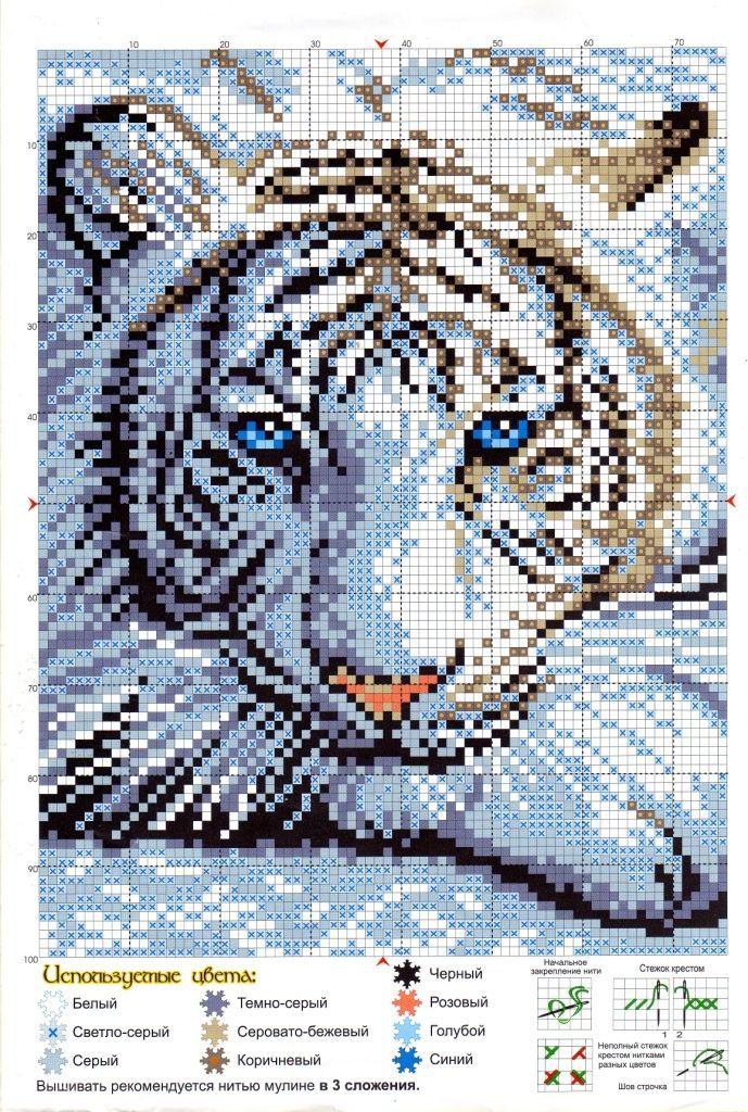 Большой тигр - схема для вышивки крестиком в 2022 году
