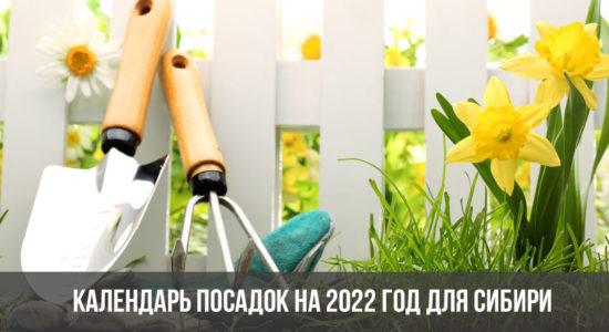 Календарь посадок на 2022 год для Сибири