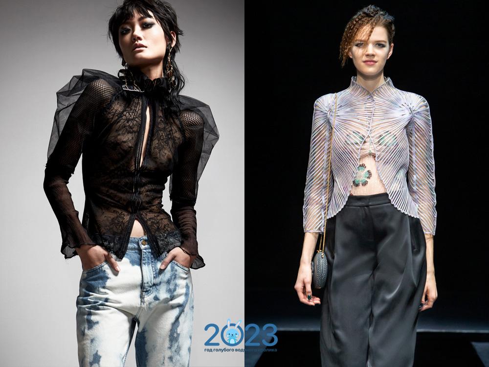 Прозрачные блузы сезона осень-зима 2021-2022