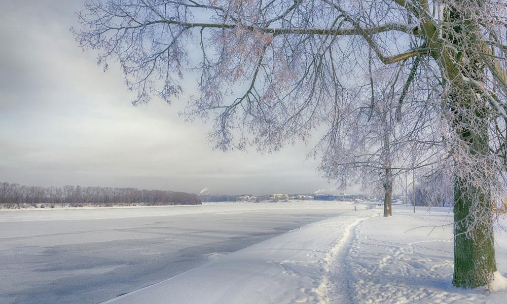Какая будет зима 2021-2022 года в России: прогноз для Центральной части
